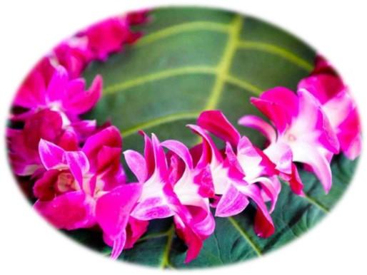 Purple flower lei