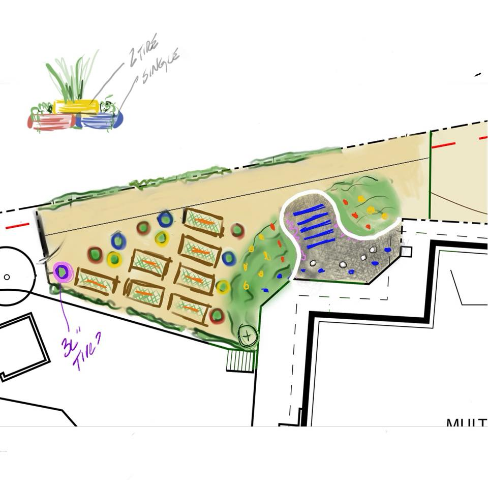 drawing of the new garden